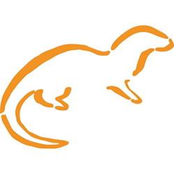Nearly Wild Weaving logo